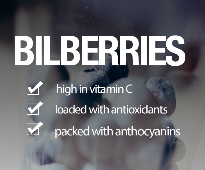 Shakeology Ingredient Roundup – BILBERRIES